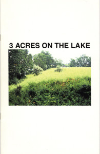 29. 3 Acres on the Lake: DuSable Park Proposal Project, Laurie Palmer, October 2000.