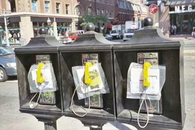 Temporary Services | Boston Ravioli